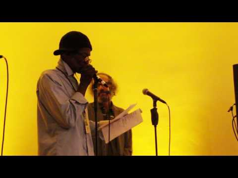 """Robert Williams Recites his Poem """"Loved and Pimped"""" at District of Art 2016"""